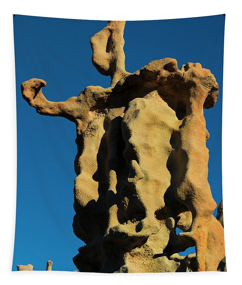 Siltstone Tapestry featuring the photograph Stone Bot by Mike Dawson