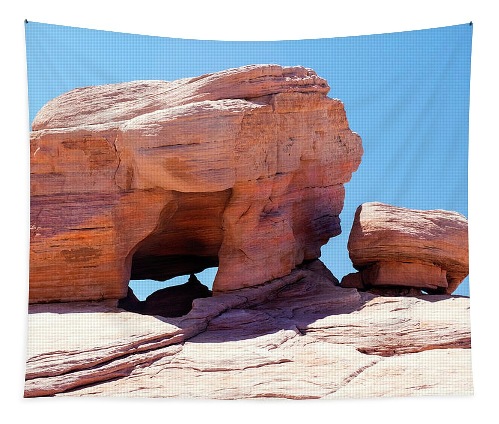 Landscape Tapestry featuring the photograph Stone Temple Valley Of Fire by Frank Wilson