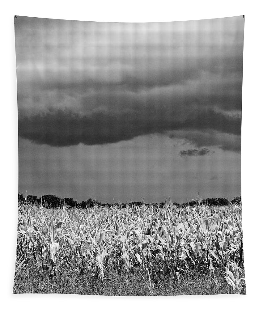 Weather Tapestry featuring the photograph Storm by Gary Richards