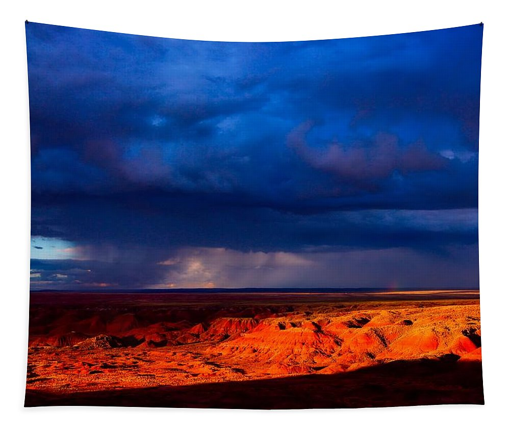 Petrified Forest National Park Tapestry featuring the photograph Storm On The Way by Nps