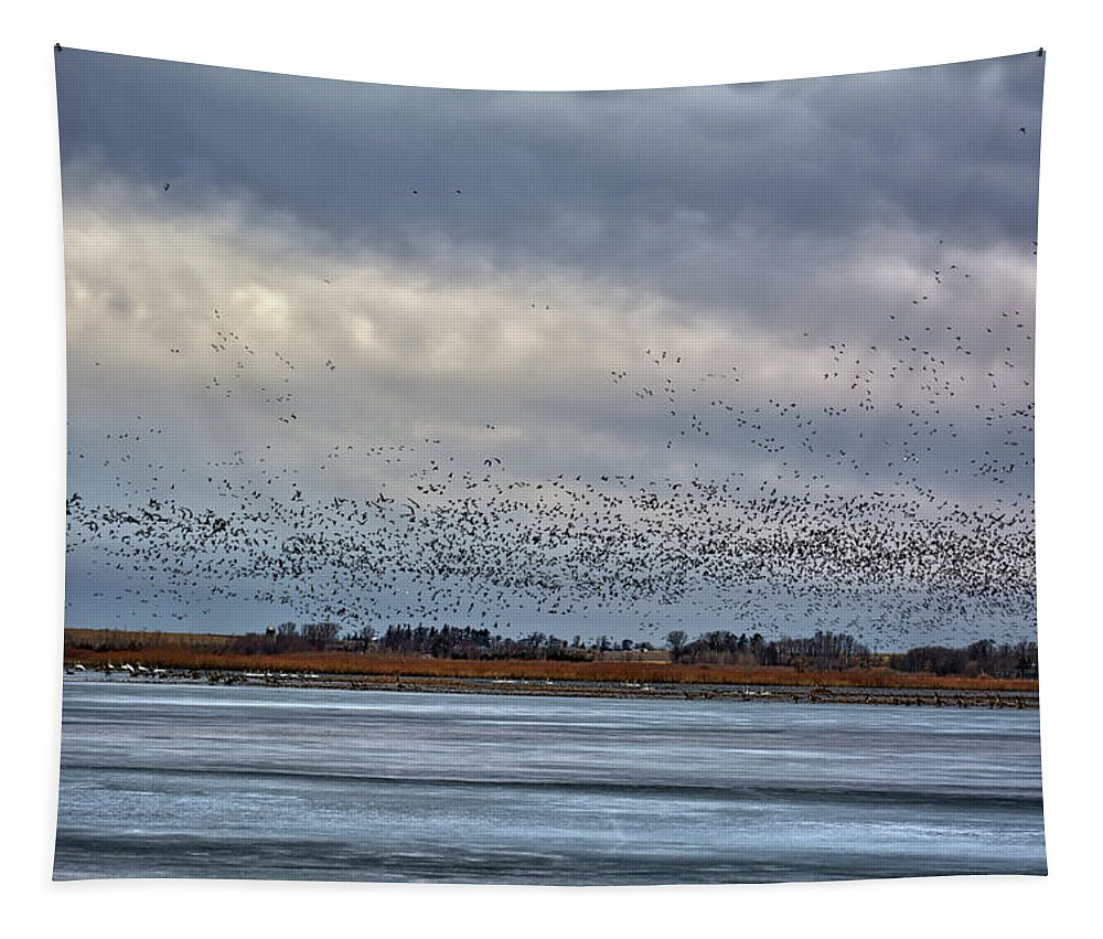 Geese Tapestry featuring the photograph Storm Swarm 2 by Bonfire Photography