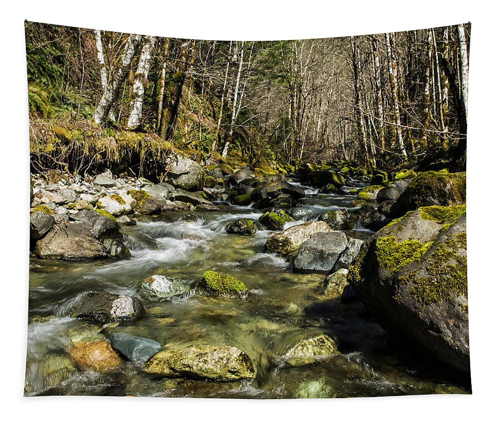 Stream Tapestry featuring the photograph Streaming by Belinda Greb