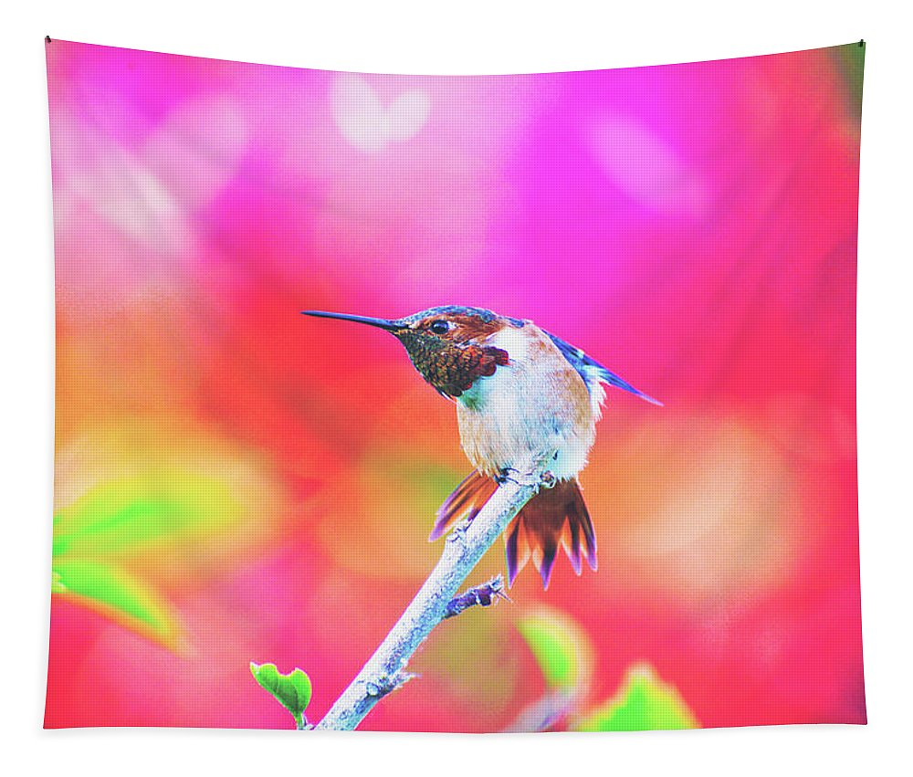 Hummingbirds Tapestry featuring the photograph Stretch by Lynn Bauer