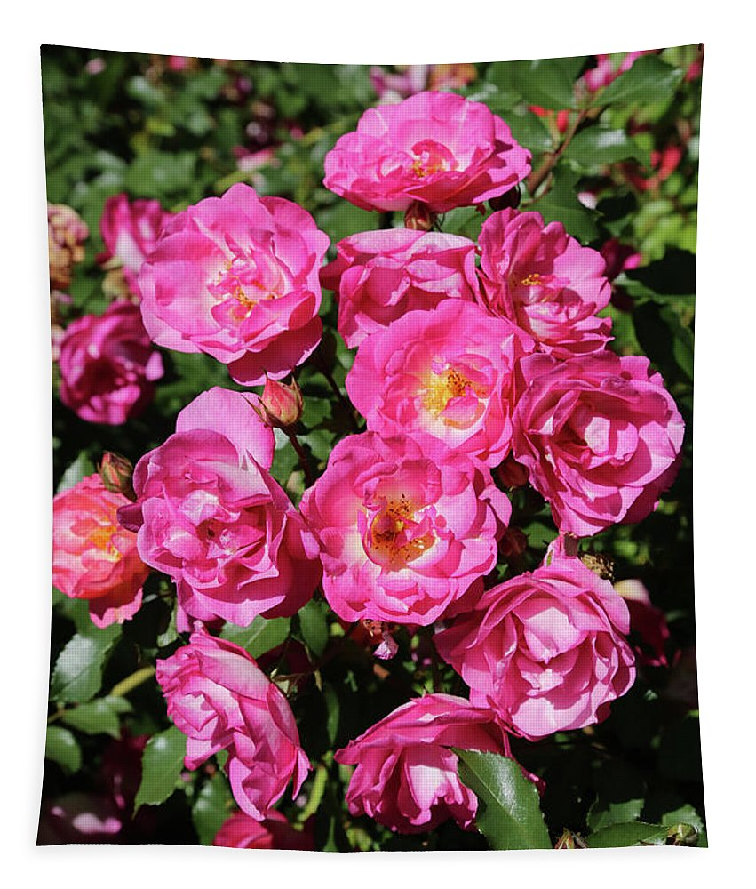 Pink Roses Tapestry featuring the photograph Stunning Pink Roses by Carol Groenen