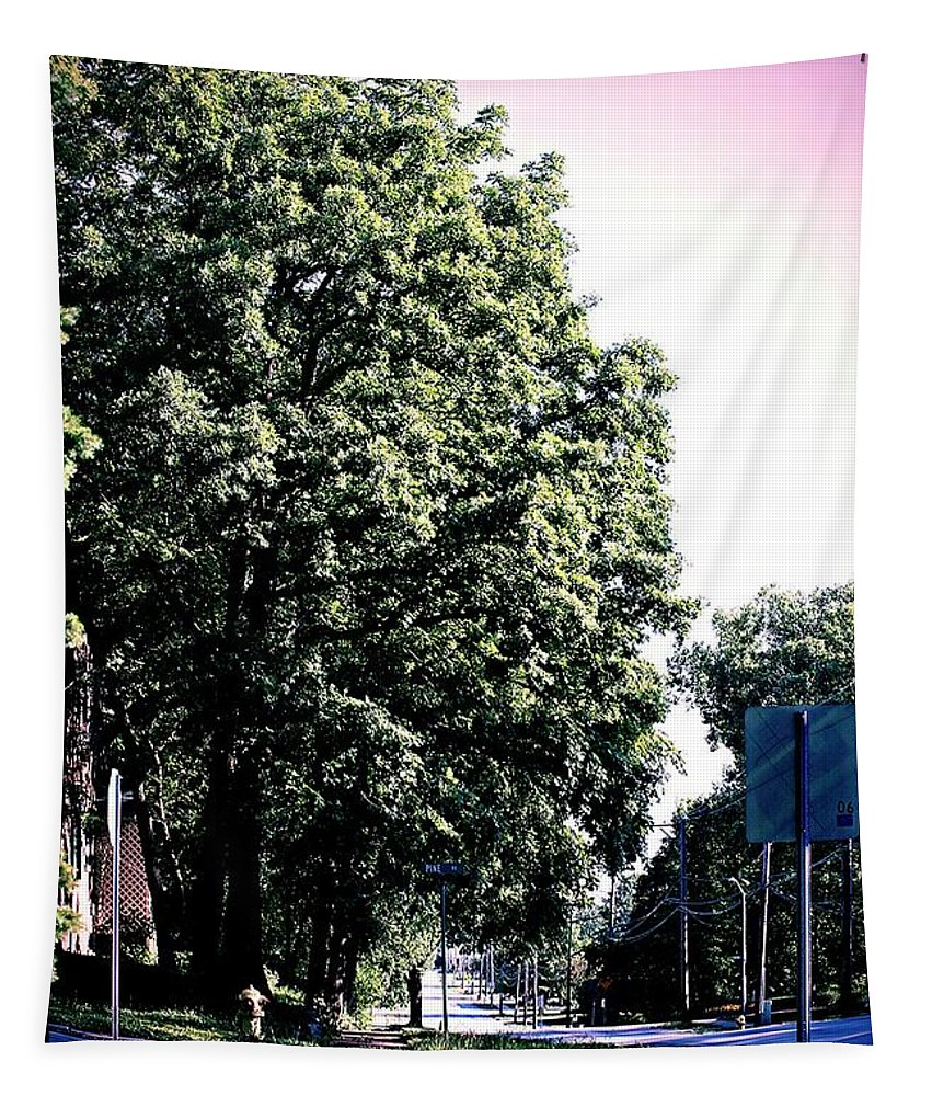 Suburban Street Tapestry featuring the photograph Suburban Tree by Frank J Casella