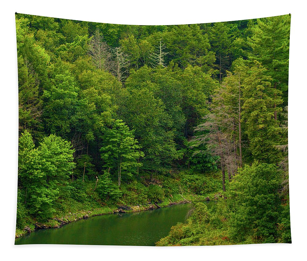 Black Rock Tapestry featuring the photograph Summer At Black Rock by Karol Livote