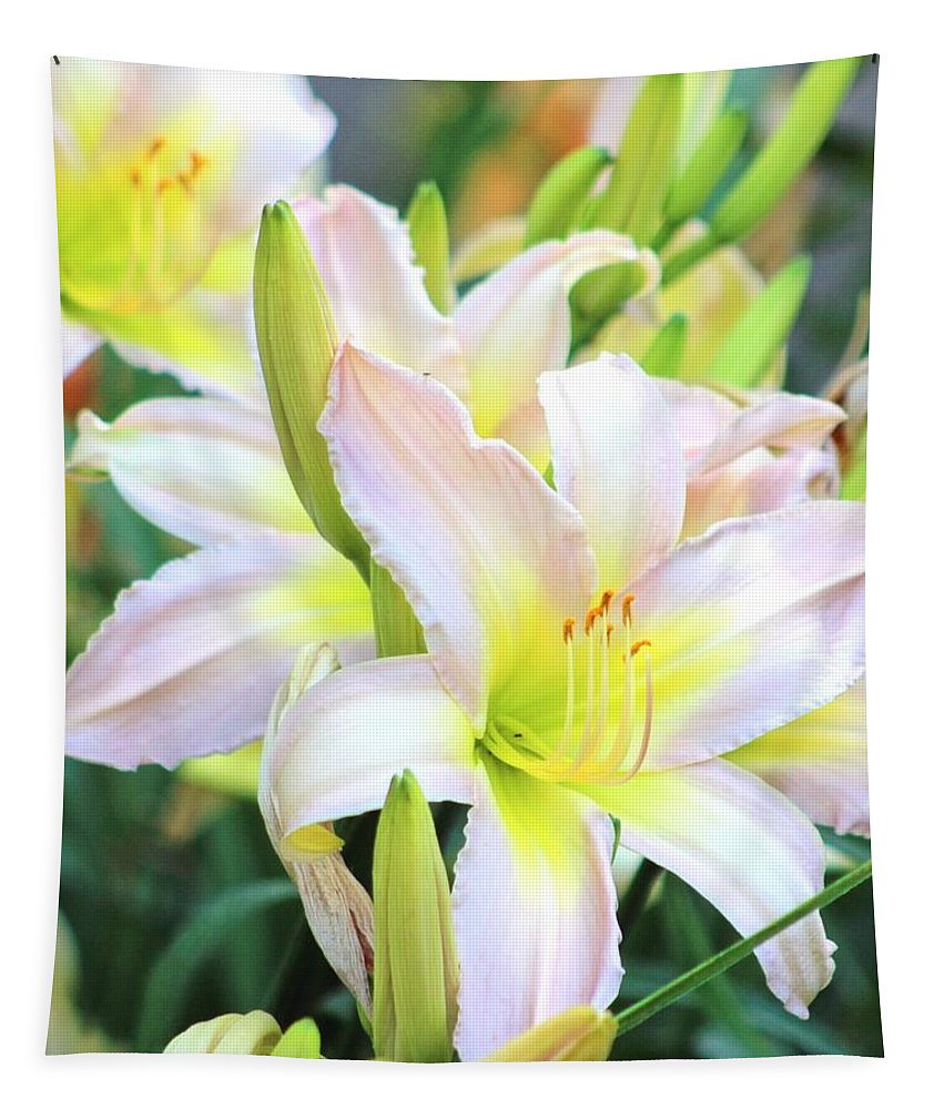 Day Lily Tapestry featuring the photograph Summer Day Lily by Gayle Miller