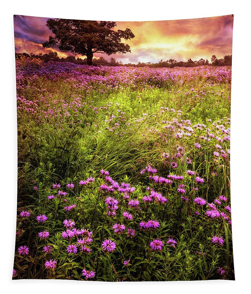 Appalachia Tapestry featuring the photograph Summer Meadows by Debra and Dave Vanderlaan