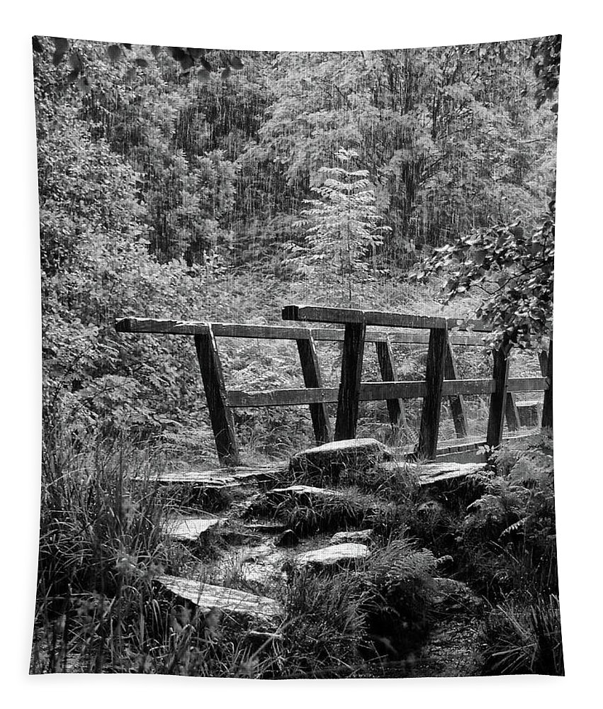Rain Tapestry featuring the photograph Summer Rain In Blake Dean by Philip Openshaw