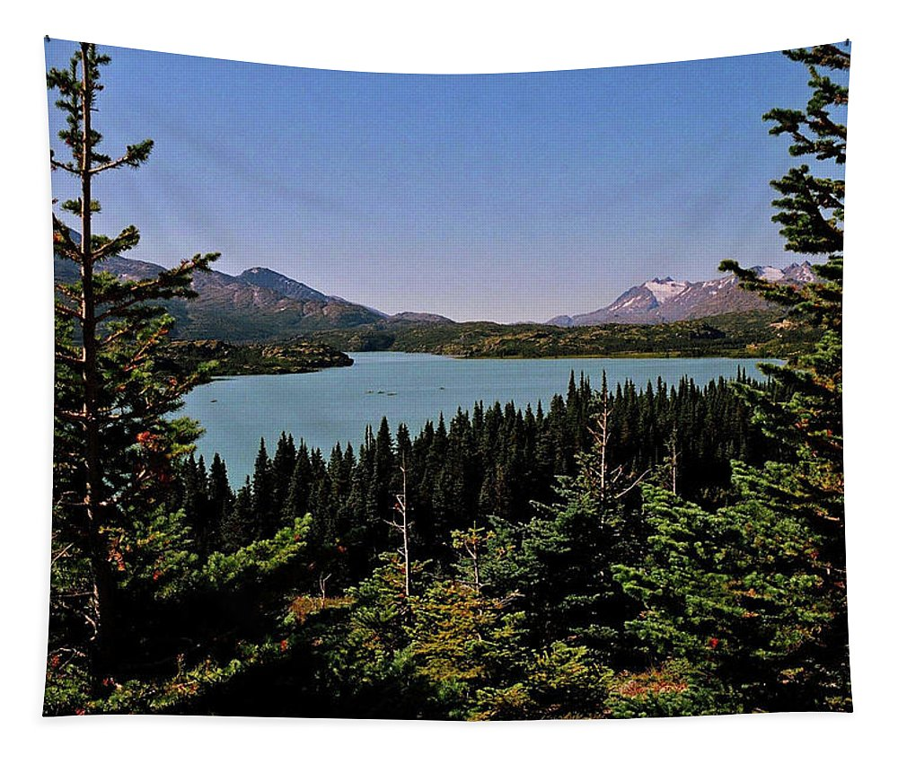 North America Tapestry featuring the photograph Tagish Lake - Yukon by Juergen Weiss