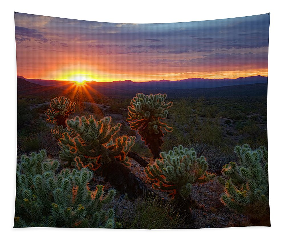 Sunset Tapestry featuring the photograph Sun Sets Over The Sonoran by Saija Lehtonen