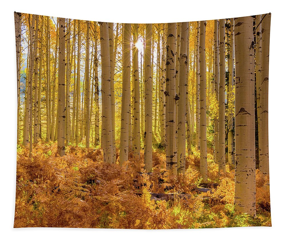 Landscape Tapestry featuring the photograph Sun Star Aspens by Daniel Dean
