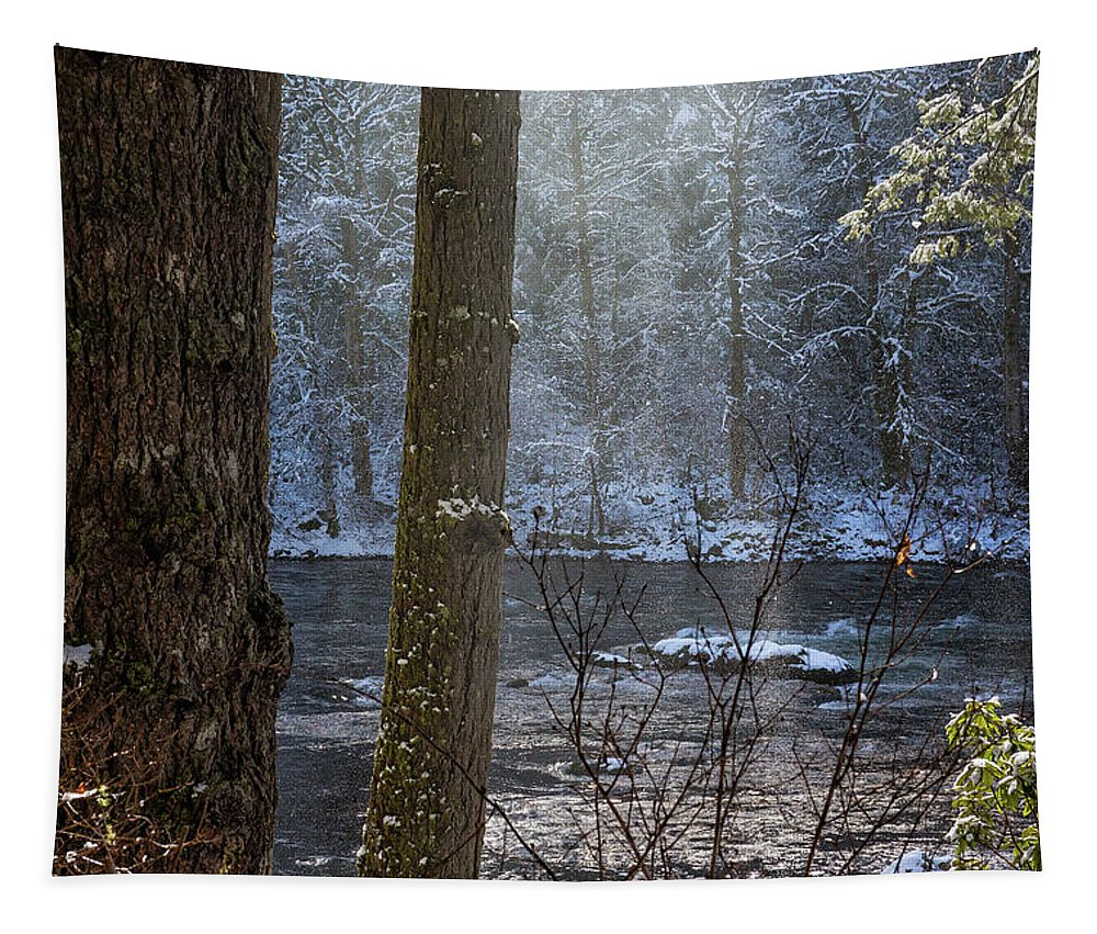 Sunbreak Tapestry featuring the photograph Sunbreak On A Snowy Day by Belinda Greb