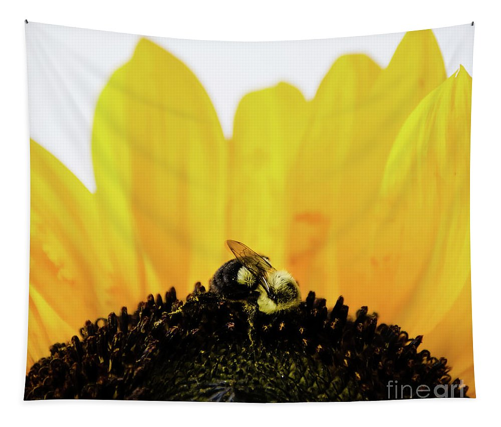 Nature Tapestry featuring the photograph Sunflower by Andrea Anderegg