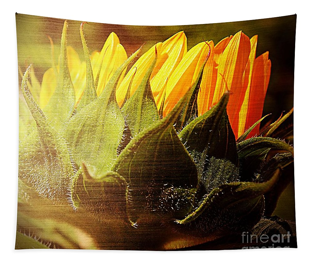 Wild Sunflower Tapestry featuring the photograph Sunflower Crown by Clare Bevan
