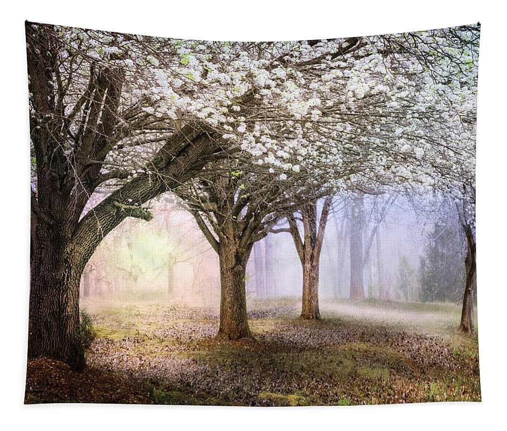 Appalachia Tapestry featuring the photograph Sunlight In The Meadow by Debra and Dave Vanderlaan