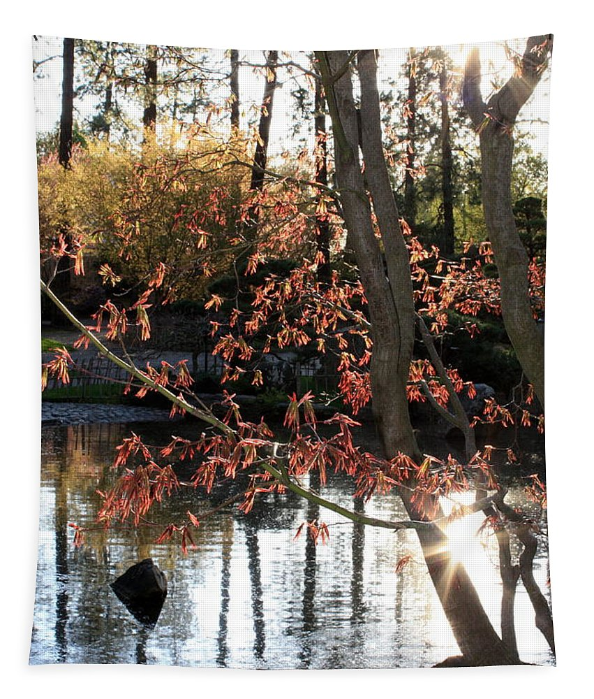 Maple Tree Tapestry featuring the photograph Sunlight Through Japanese Maple by Carol Groenen