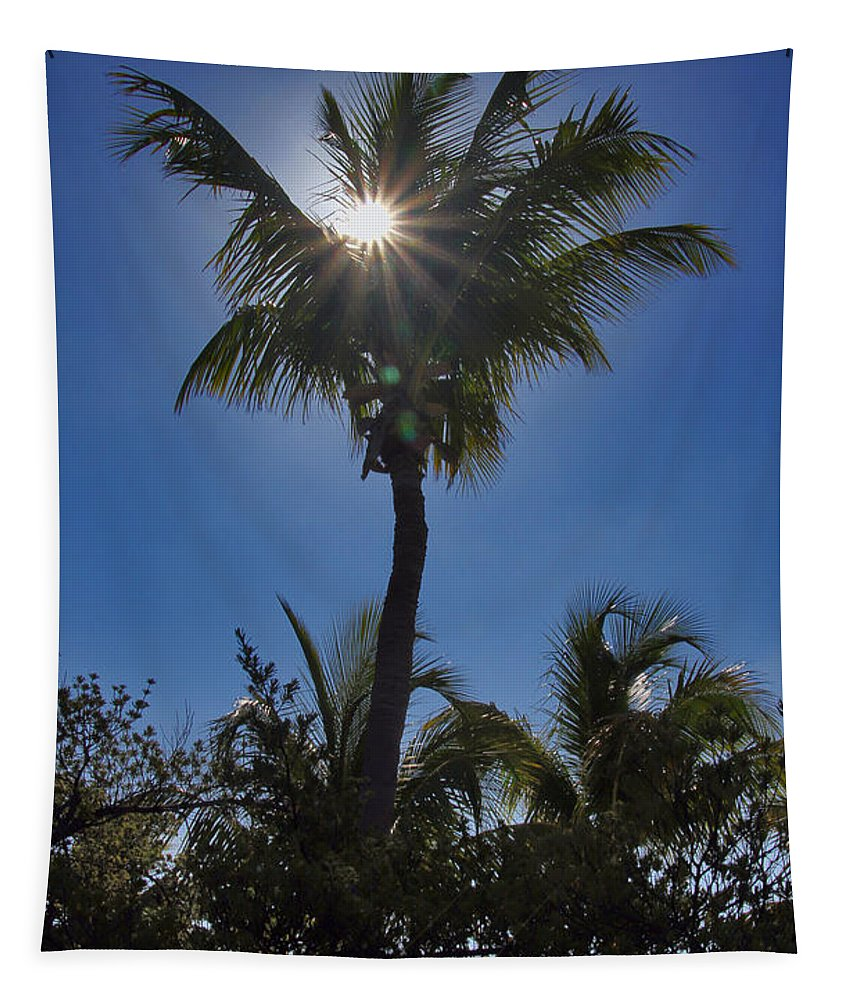 Nature Tapestry featuring the photograph Sunny Palm by Bob Slitzan