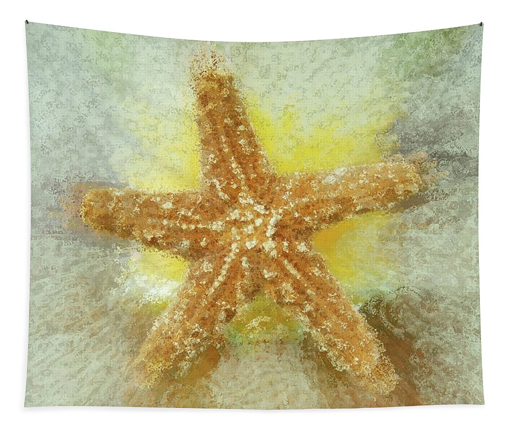 Beach Art Tapestry featuring the photograph Sunny Star by Linda Sannuti