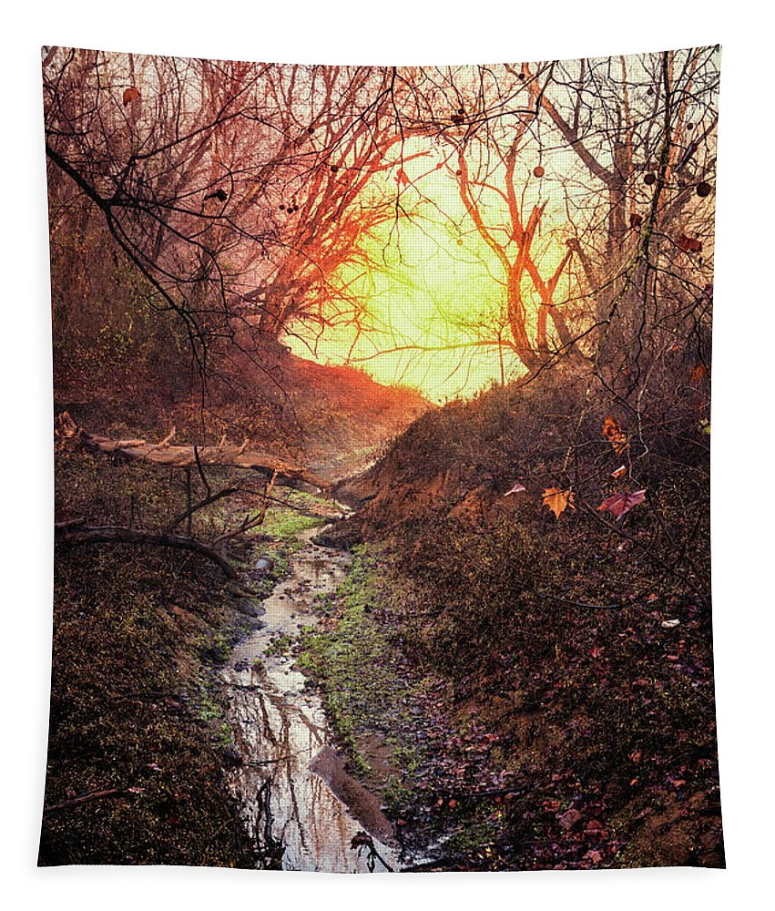 Appalachia Tapestry featuring the photograph Sunrise In The Forest by Debra and Dave Vanderlaan
