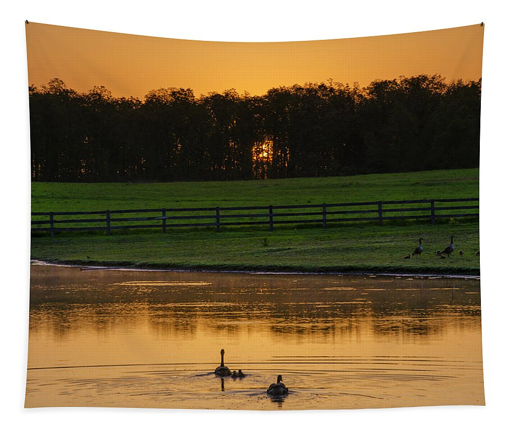 Sunrise Tapestry featuring the photograph Sunrise On A Gettysburg Duck Pond by Bill Cannon