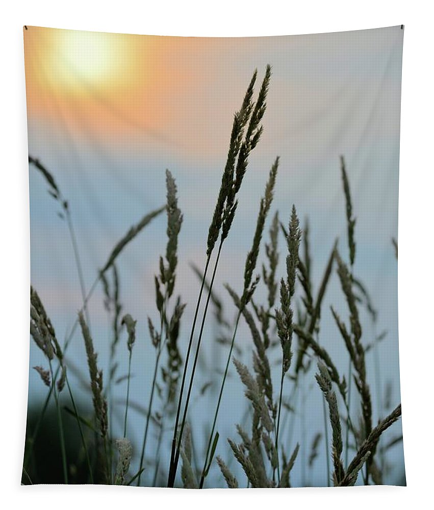 Grass Tapestry featuring the photograph Sunrise Over Grass by Bonfire Photography