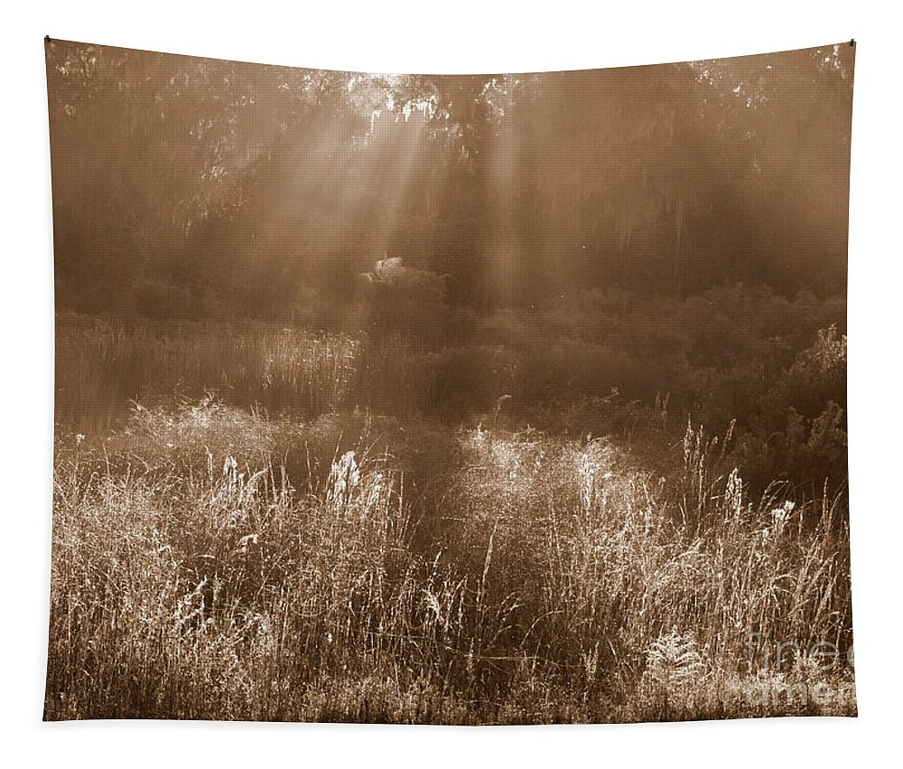 Sepia Tapestry featuring the photograph Sunrise Sepia by Carol Groenen