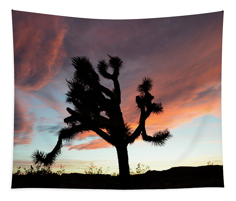 Joshua Tree National Park Tapestry featuring the photograph Sunset At Joshua Tree by Bob Christopher