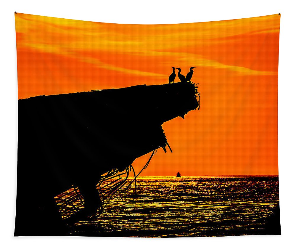 Cape May Tapestry featuring the photograph Sunset At The Ss Atlantus Concrete Ship by Nick Zelinsky