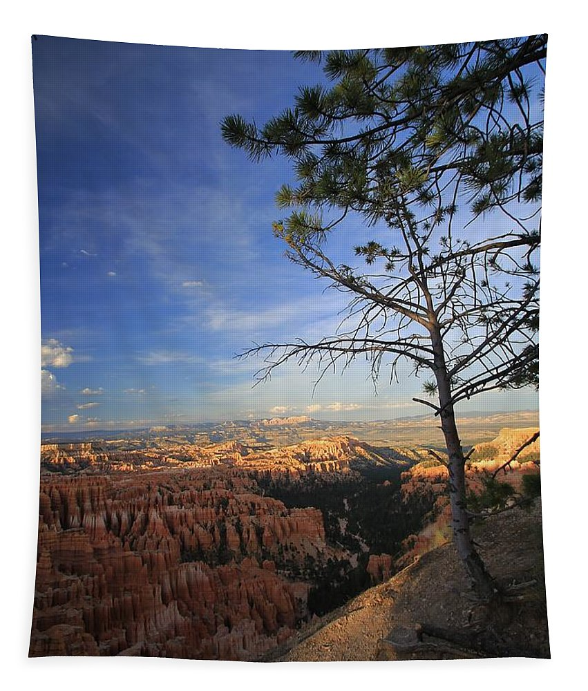 Bryce Canyon Tapestry featuring the photograph Sunset Colours Bryce Canyon 3 by Mo Barton