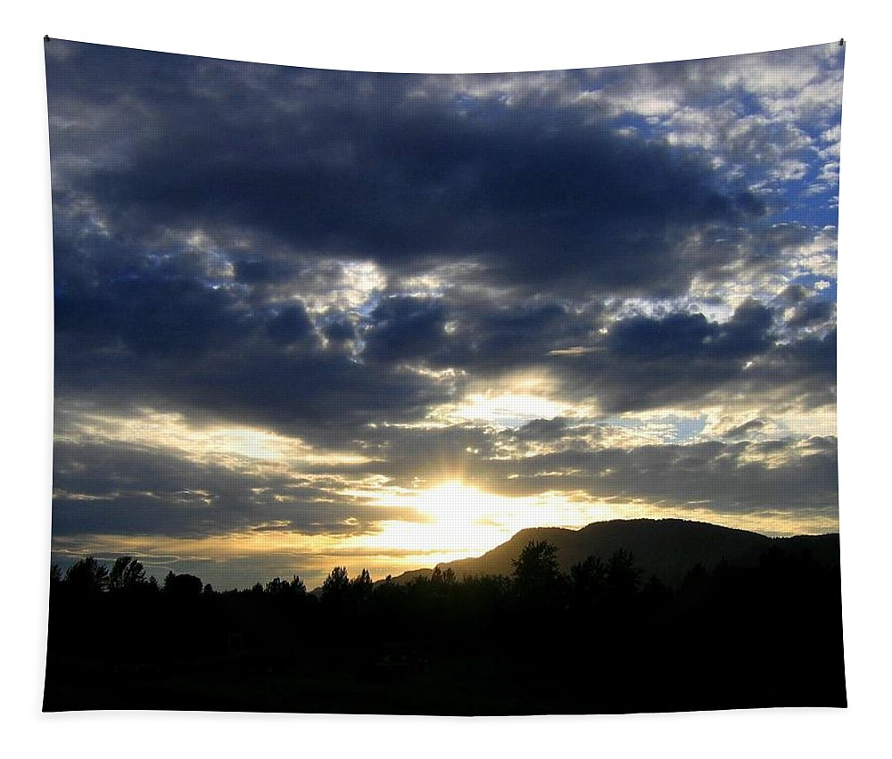 Sunset Tapestry featuring the photograph Sunset From Mcarthur Island by Will Borden