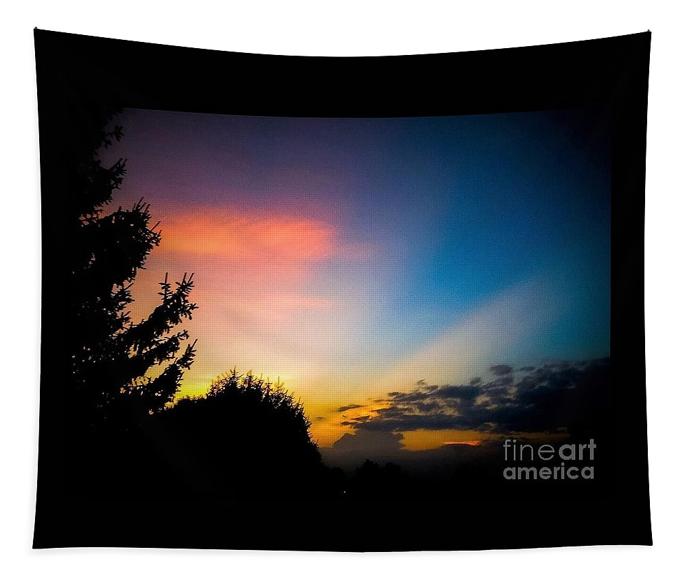Sunset Tapestry featuring the photograph Sunset In Summer by Debra Lynch
