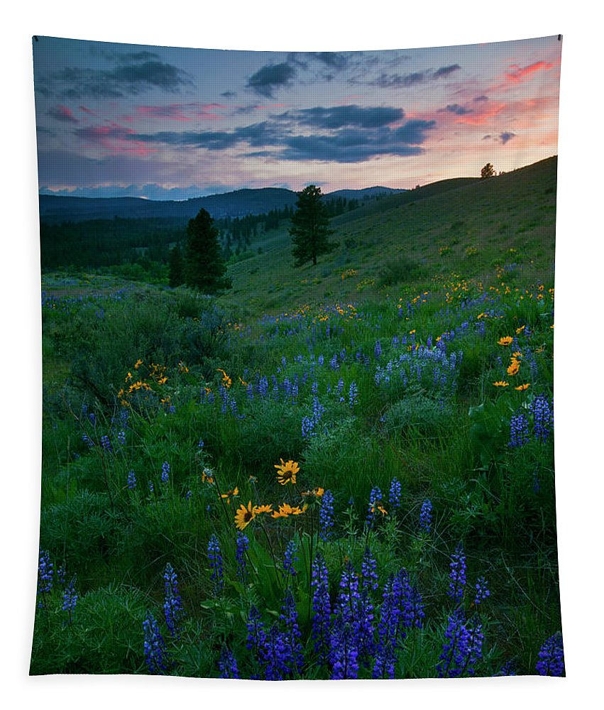 Wenas Valley Tapestry featuring the photograph Sunset Meadow Trail by Mike Dawson