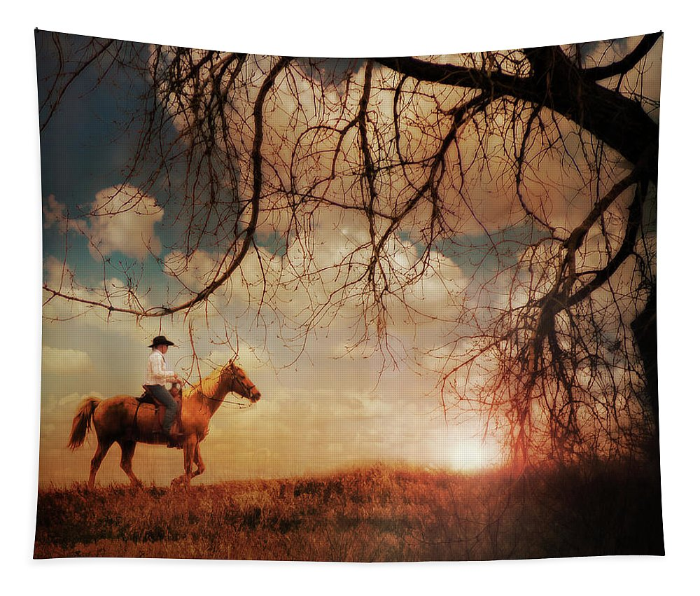 Sunset Tapestry featuring the photograph Sunset Ride by John Anderson