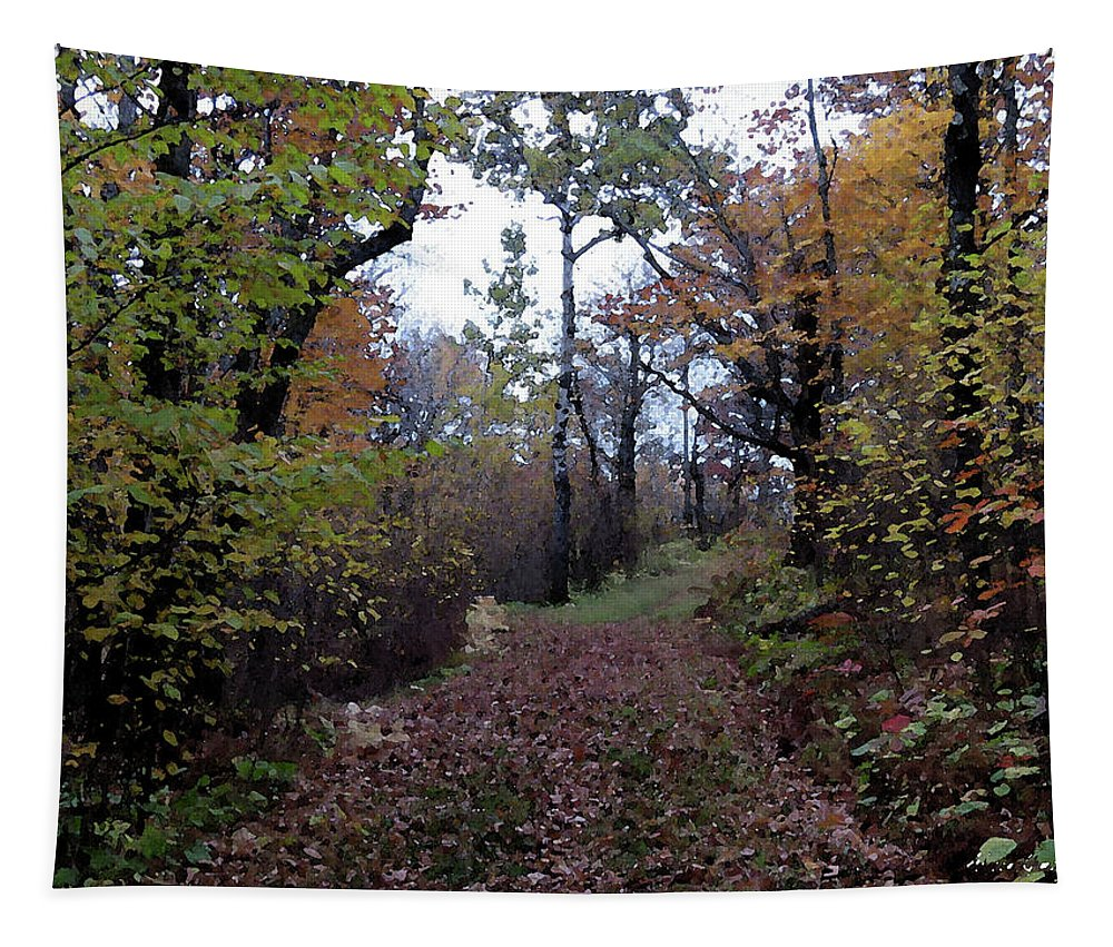 Fall Tapestry featuring the photograph Superior Hiking Trail by Alison Gimpel