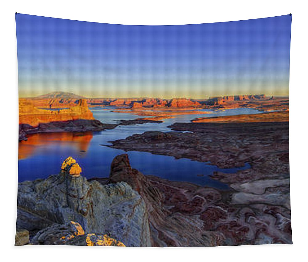 Nature Tapestry featuring the photograph Surreal Alstrom by Chad Dutson