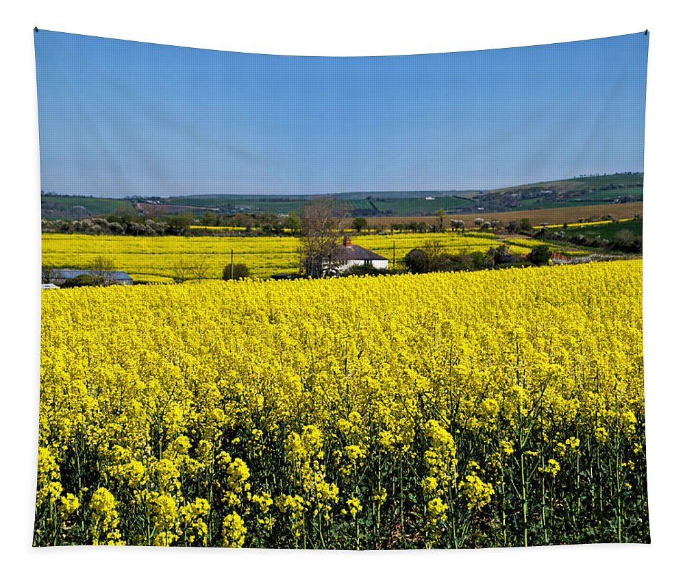 Rapeseed Tapestry featuring the photograph Surrounded By Rapeseed Flowers by Susie Peek