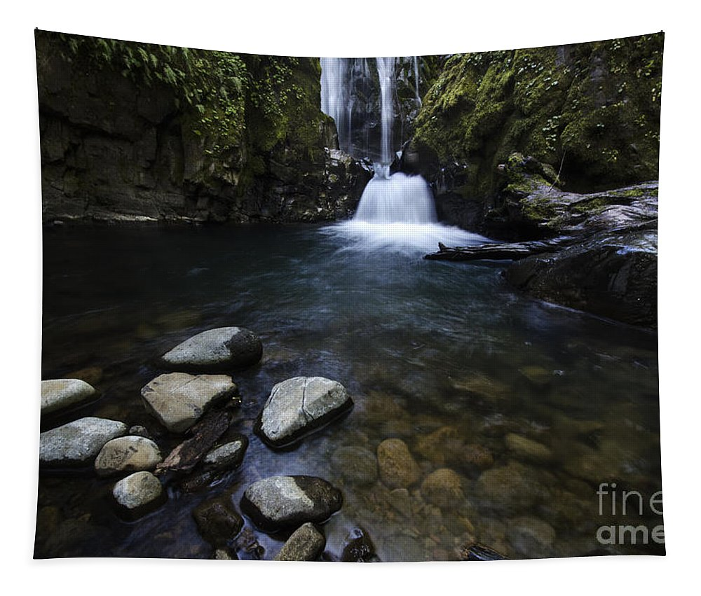 Falls Tapestry featuring the photograph Susan Creek Falls Oregon 1 by Bob Christopher