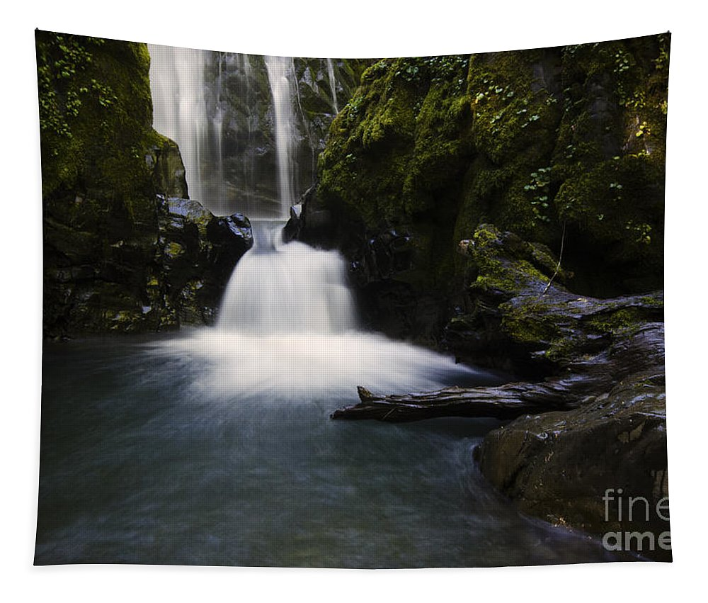 Falls Tapestry featuring the photograph Susan Creek Falls Oregon 2 by Bob Christopher