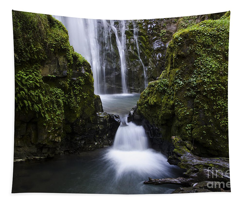 Falls Tapestry featuring the photograph Susan Creek Falls Oregon 4 by Bob Christopher