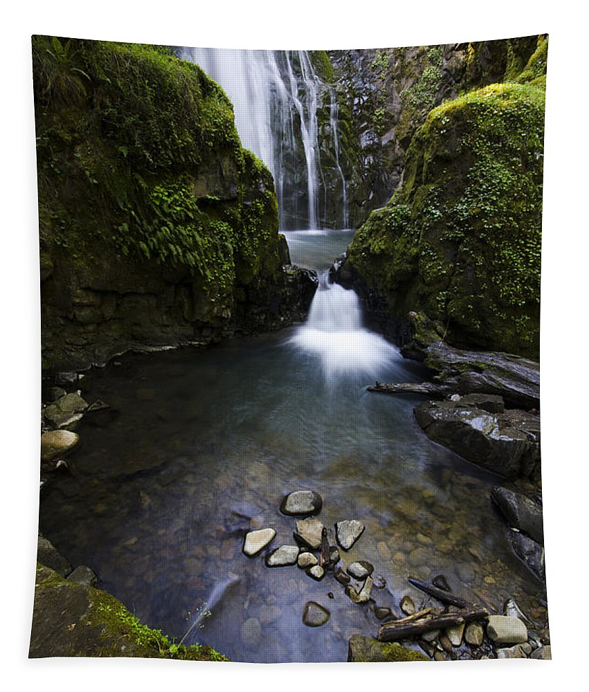 Falls Tapestry featuring the photograph Susan Creek Falls Oregon 5 by Bob Christopher