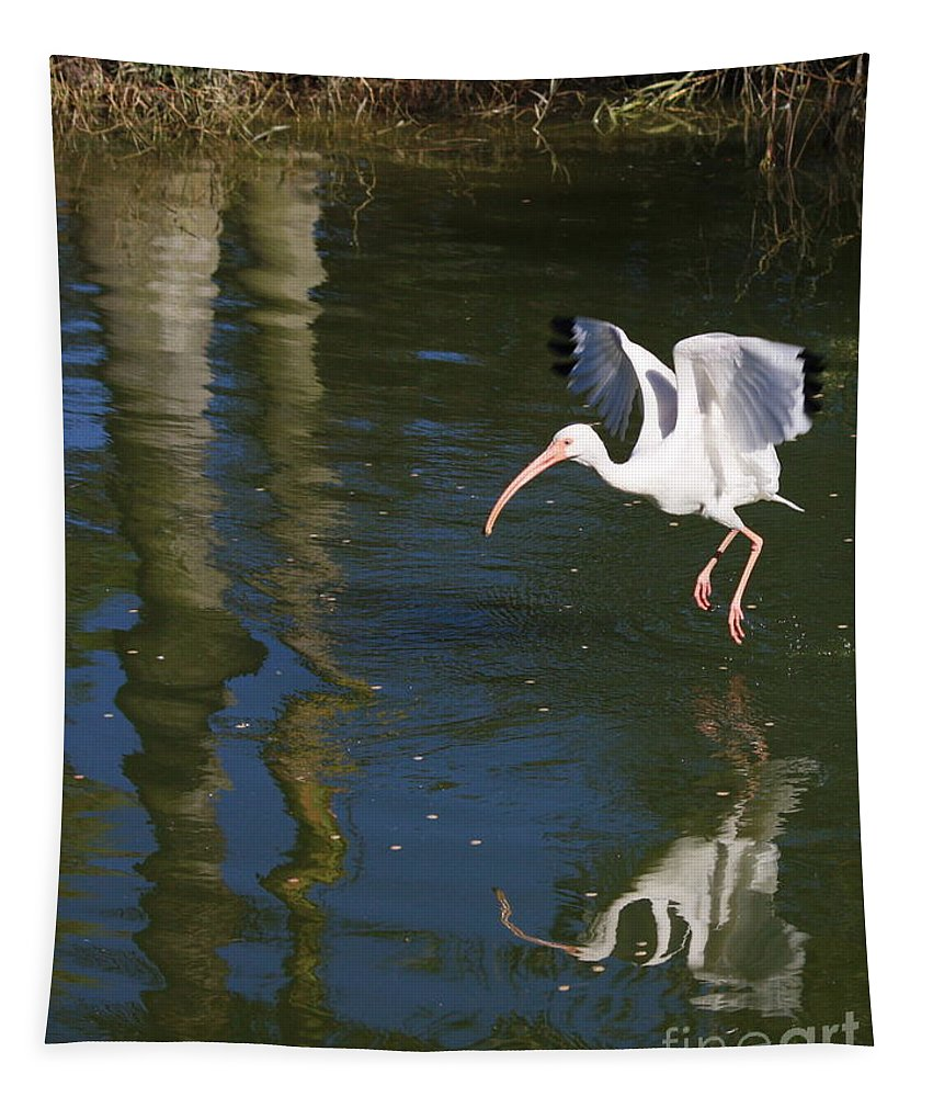 Flight Tapestry featuring the photograph Suspended In Flight by Carol Groenen