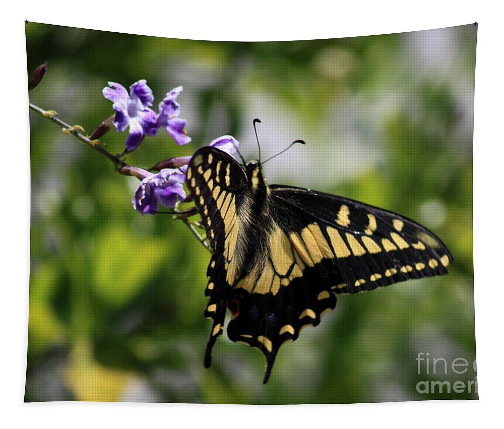Swallowtail Butterfly Tapestry featuring the photograph Swallowtail Butterfly 2 by Carol Groenen