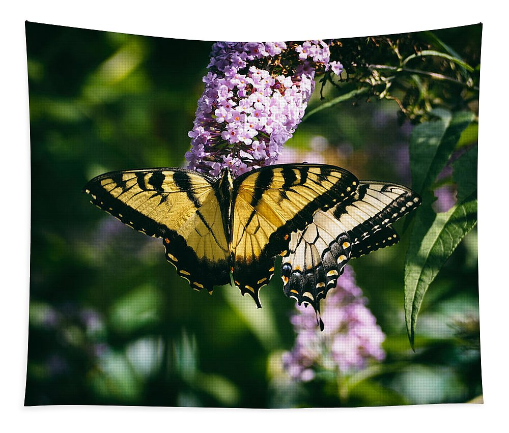 Swallowtail Butterfly Tapestry featuring the photograph Swallowtail Butterfly At The Maryland Zoo by Bill Swartwout Fine Art Photography