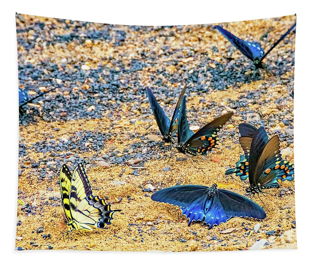 Steve Harrington Tapestry featuring the photograph Swallowtail Butterfly Convention by Steve Harrington