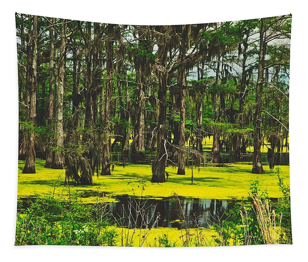 Panther Swamp Tapestry featuring the photograph Swampy Beauty by Mountain Dreams