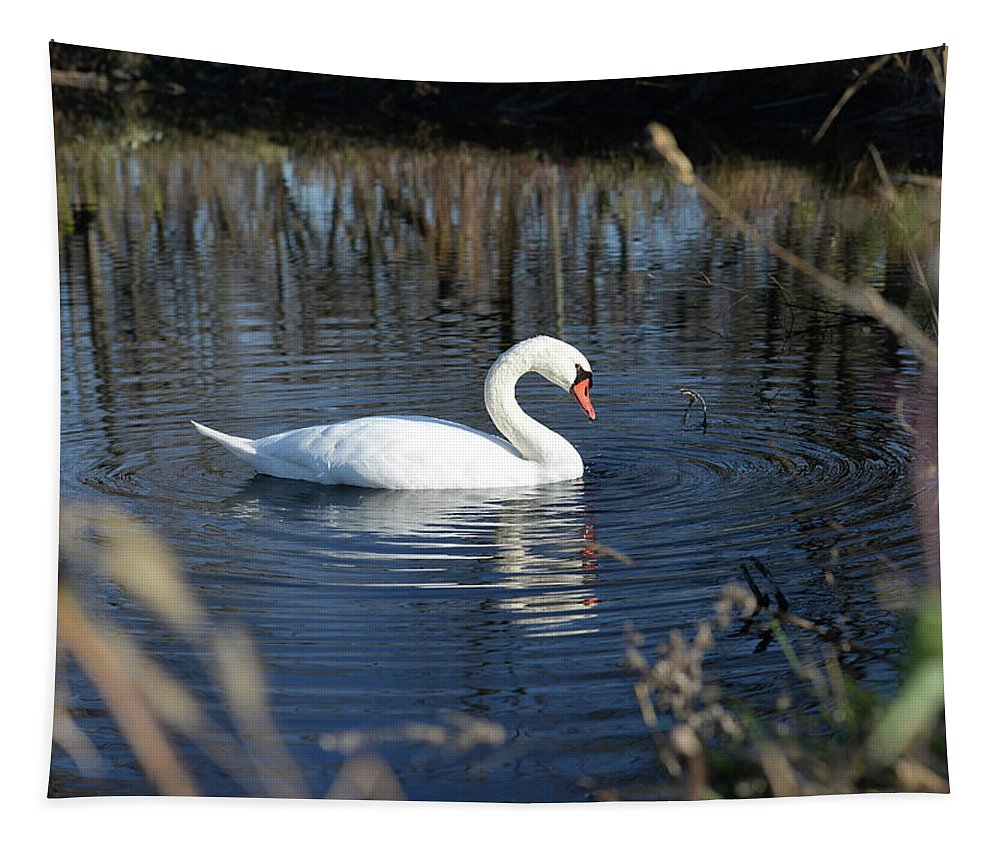 White Swan Tapestry featuring the photograph Swan In Blue Pond by Barbara Treaster