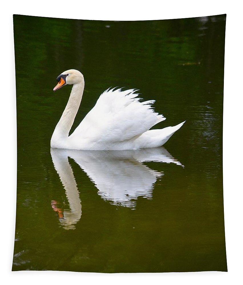 Swan Tapestry featuring the photograph Swan Reflecting by Richard Bryce and Family