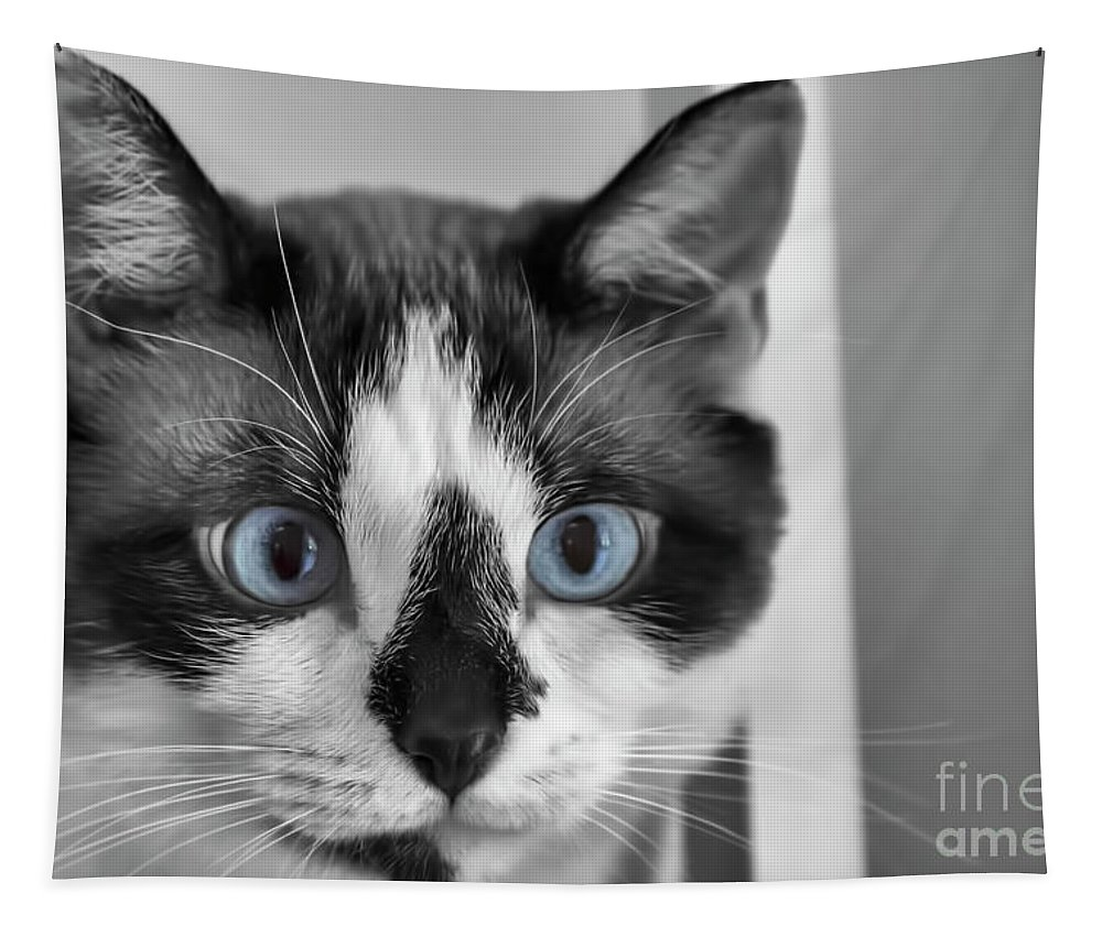 Snowshoe Cat Tapestry featuring the tapestry - textile Sweet Blue Eyes by Elisabeth Lucas