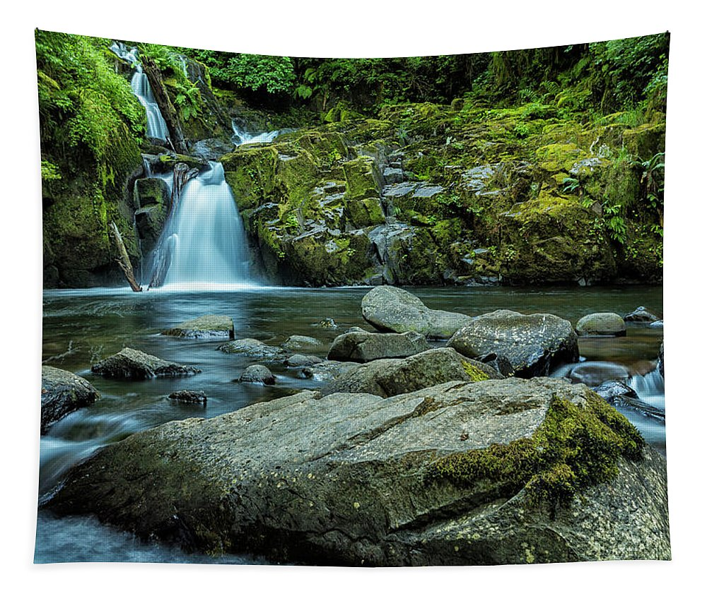 Sweet Creek Falls Tapestry featuring the photograph Sweet Creek Falls by Belinda Greb
